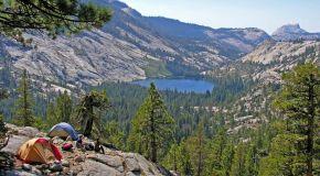 Yosemite Park